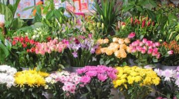 Photo of Sandeep Flowers Decorators